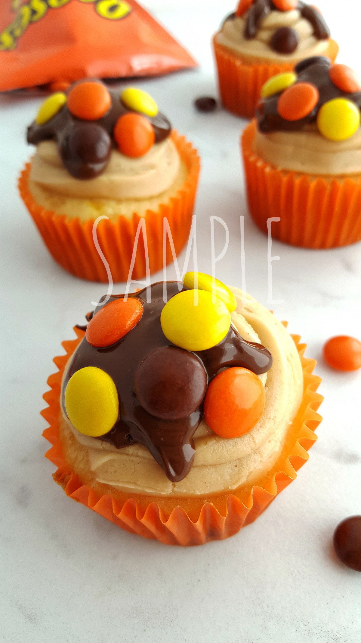 ReesesPiecesCupcakes_Sample1