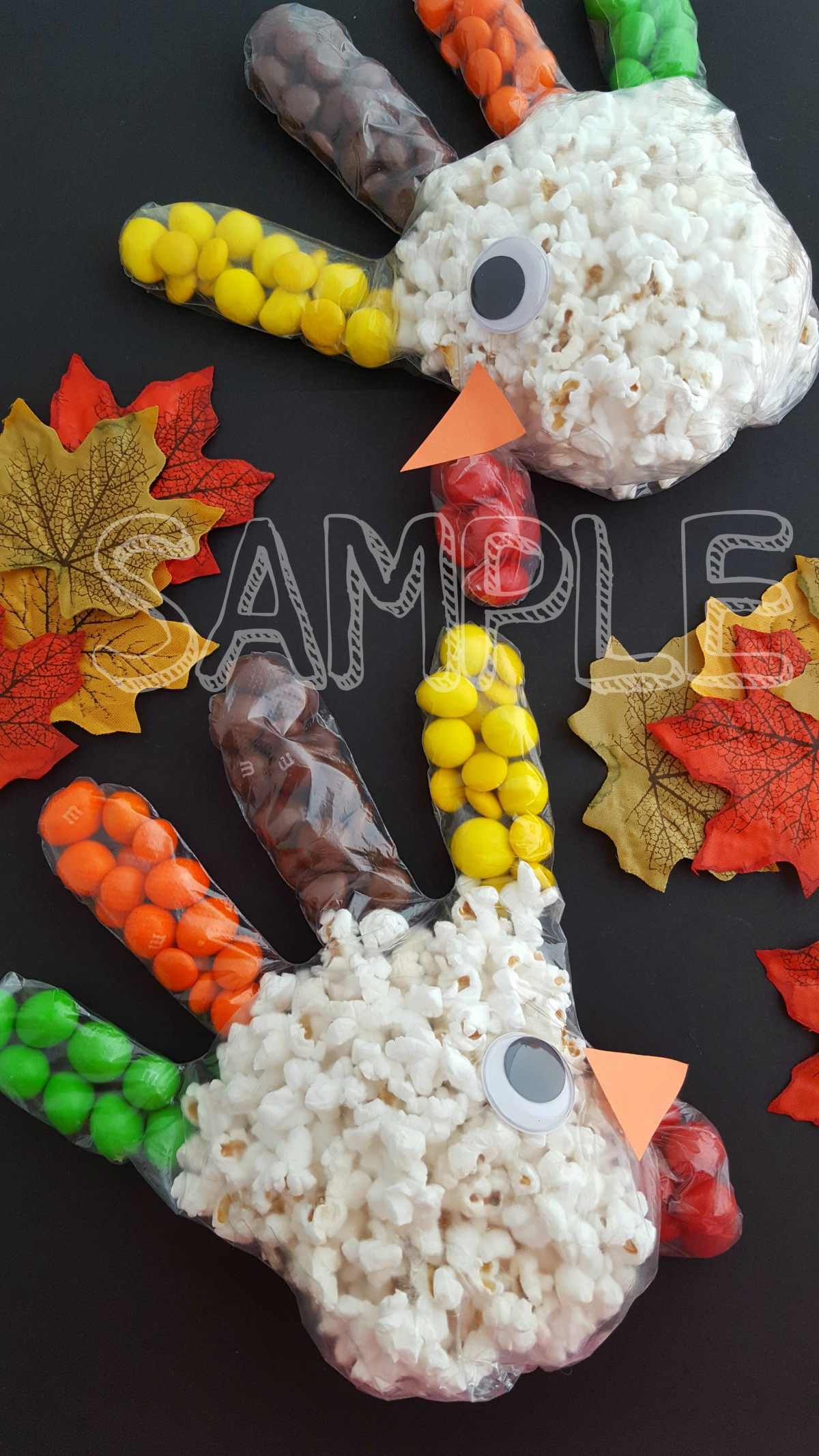 TurkeyPopcornTreatBag_Sample3