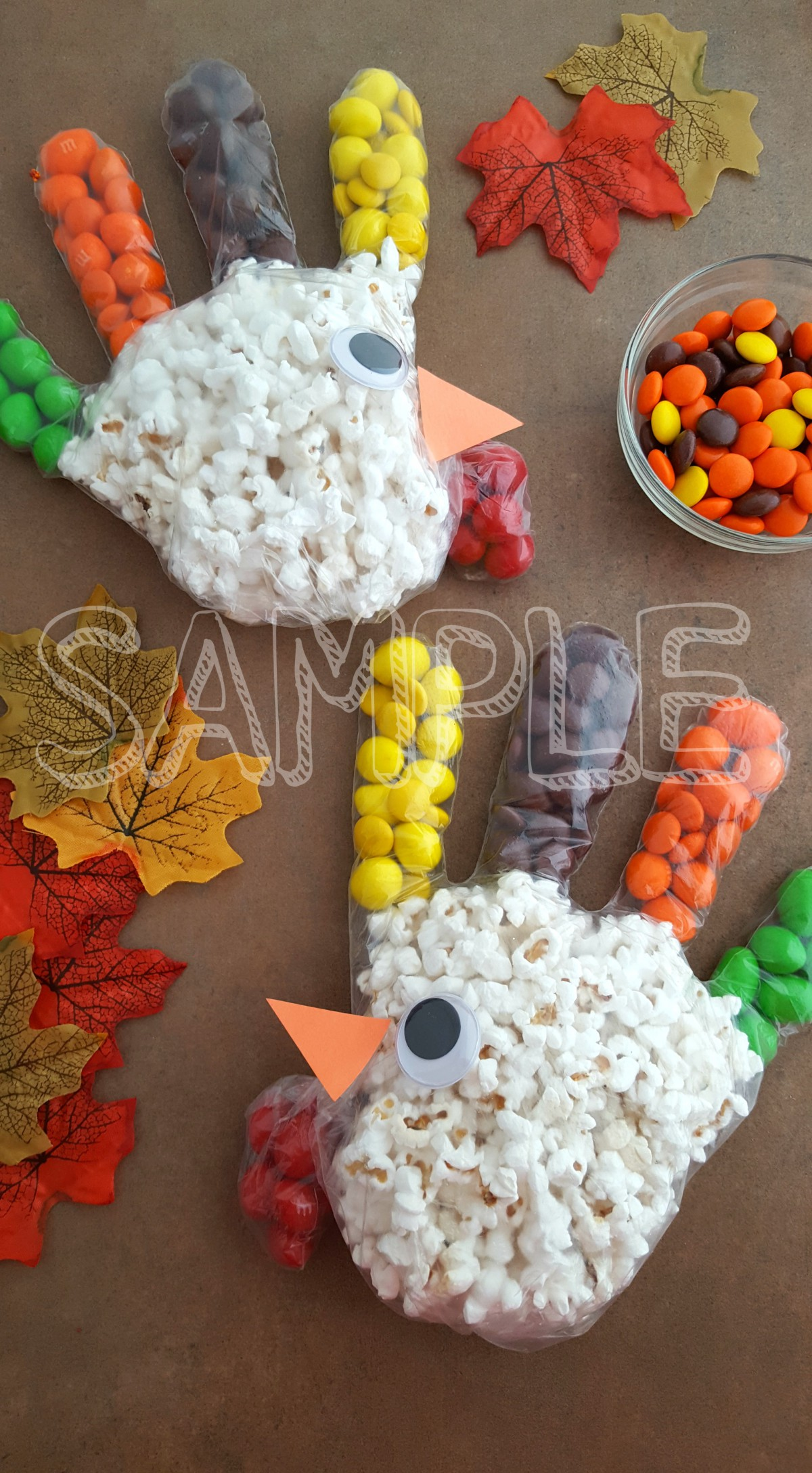 TurkeyPopcornTreatBag_Sample4