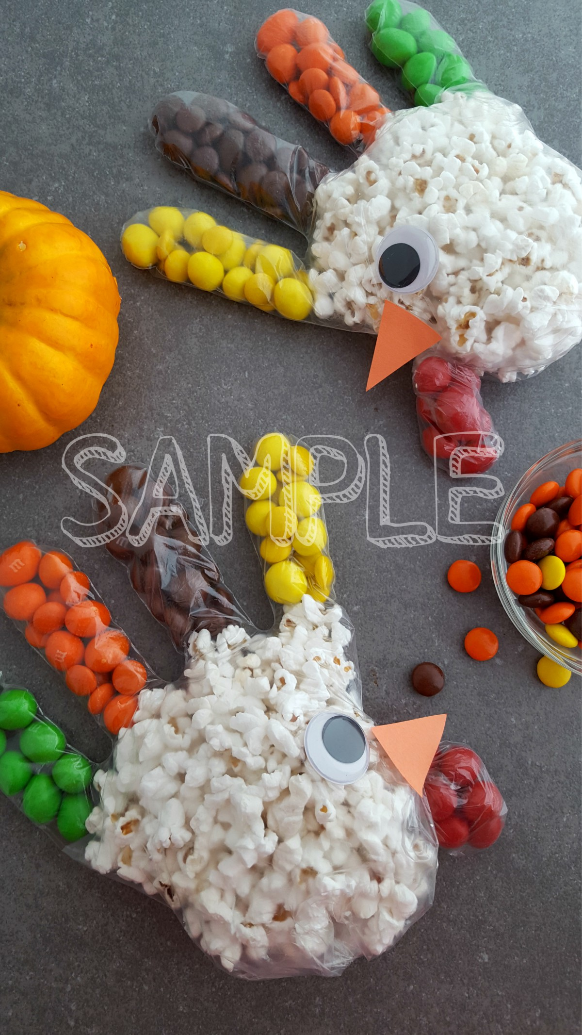 TurkeyPopcornTreatBag_Sample5
